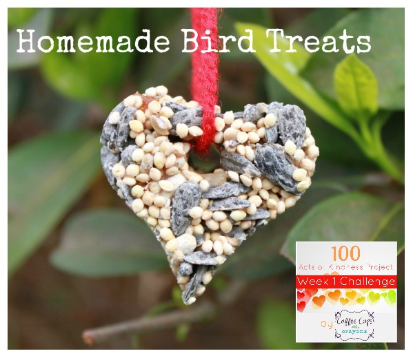 Heart Shaped DIY Bird Feeder