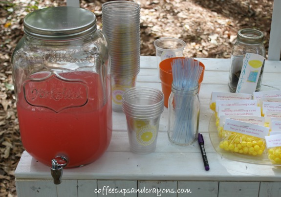 Host a Lemonade Stand