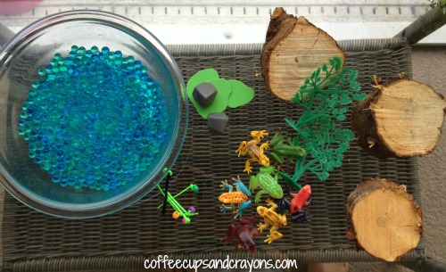 Life Cycle of a Frog Supplies