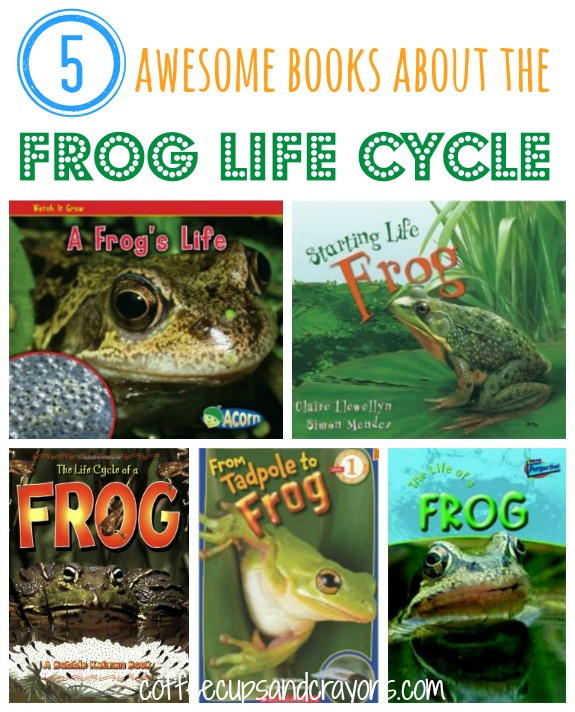 The Frog Life Cycle Books for Kids