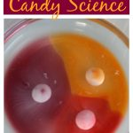 Skittles Candy Science Experiment
