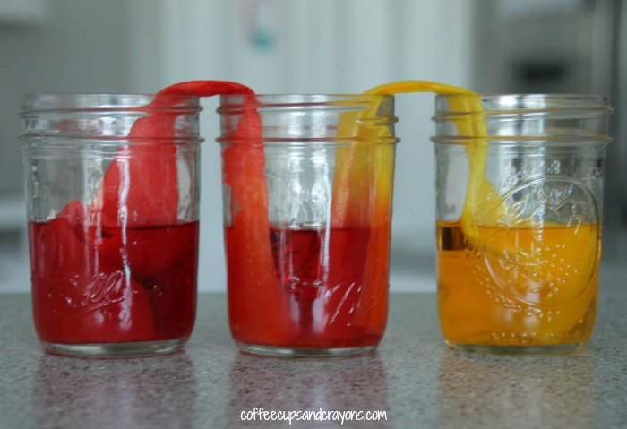 Walking Water Science Experiment for Kids | Coffee Cups and Crayons