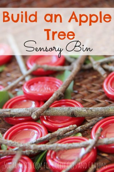 build an apple tree sensory bin