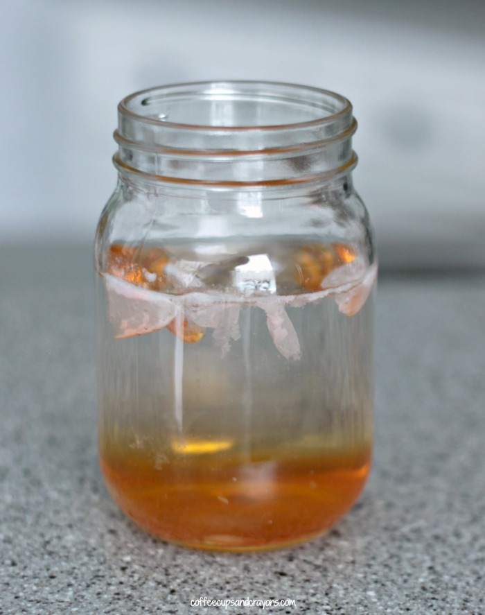 Dissolving Candy Corn Experiment for Halloween! Plus 2 more candy corn science activities!