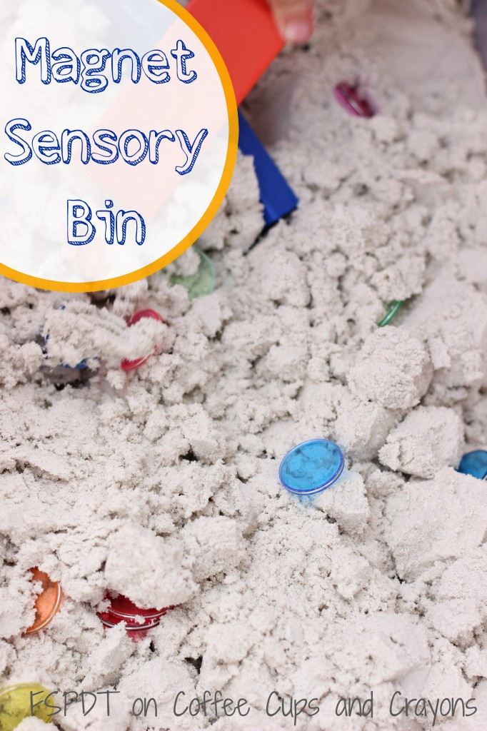 Magnet Sensory Bin Science Activity for Kids!