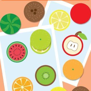 Fruit Slices File Folder Game