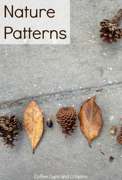 Teach Kids Math Patterns Using Nature!