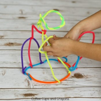 Pipe Cleaner STEAM Activity