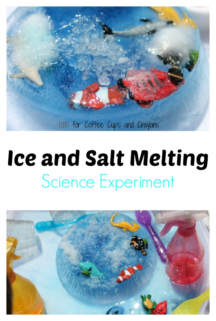 Ice and Salt Science Experiment