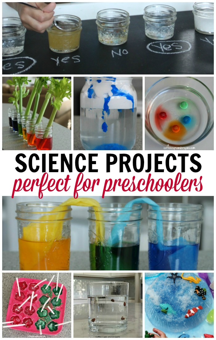 science activities for preschoolers pinterest science projects for preschoolers coffee cups and crayons 293